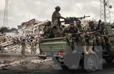 Quân đội Somalia bắt giữ một thủ lĩnh cấp cao của al-Shabab