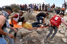 Chấm dứt định cư bất hợp pháp ở Bờ Tây, tôn trọng thánh địa Jerusalem