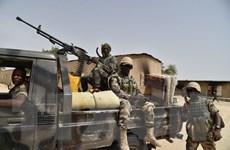 Hàng chục binh sỹ Niger thương vong do bị phục kích