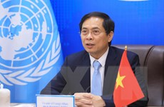 Việt Nam coi trọng quan hệ hợp tác tốt đẹp với Ủy ban ESCAP