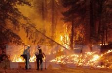 """Biến đổi khí hậu: Thế giới vẫn có cơ hội tránh kịch bản """"khủng khiếp"""""""