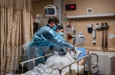 Thế giới có gần 4,4 triệu ca tử vong, số trẻ em Mỹ nhập viện cao