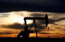 Thị trường năng lượng ghi nhận tuần giảm sâu nhất hơn 9 tháng