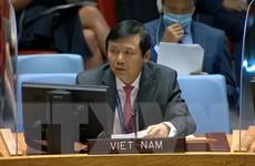 Việt Nam kêu gọi chấp nhận đề xuất của LHQ về hoà bình cho Yemen