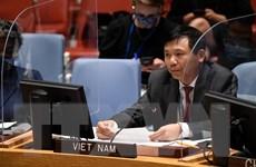 Việt Nam kêu gọi bảo đảm an ninh cho cuộc bầu cử ở Iraq
