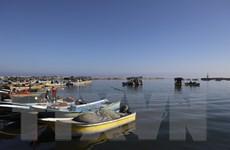 Israel nới lỏng kiểm soát và mở rộng vùng đánh cá tại Dải Gaza
