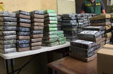 Europol: Bỉ và Hà Lan là trung tâm buôn lậu cocaine lớn vào châu Âu