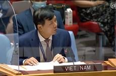 Việt Nam đề cao tiến trình chuyển tiếp phù hợp với từng quốc gia