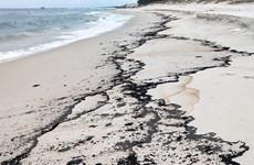 Quảng Trị lên phương án xử lý lượng dầu vón cục trôi dạt vào bờ biển