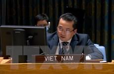 Việt Nam đề cao tầm quan trọng của việc bầu cử đúng thời hạn ở Libya