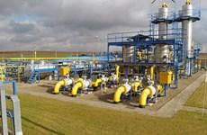 Ba Lan tuyên bố không gia hạn hợp đồng mua khí đốt của Nga