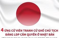 [Infographics] 4 ứng cử viên Chủ tịch đảng LDP cầm quyền ở Nhật Bản