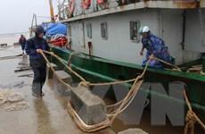 Quảng Trị, Phú Yên chủ động ứng phó với diễn biến áp thấp nhiệt đới