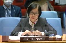 Việt Nam kêu gọi thực hiện luật nhân đạo quốc tế tại Ethiopia