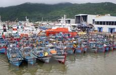 Quảng Trị hoàn thành sắp xếp thuyền tránh trú trước 12 giờ ngày 7/10