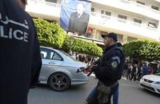 Algeria đập tan nhiều âm mưu tấn công của các phần tử ly khai