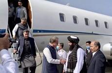 Ngoại trưởng Pakistan đến Kabul đàm phán với chính quyền Taliban