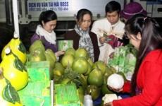 Hội chợ nông nghiệp: Nơi hội tụ hương vị Xuân đất Việt