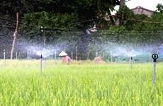 Mục tiêu 500.000ha diện tích cây trồng được tưới hiện đại