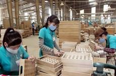 2,6 triệu Euro giúp xây dựng nguồn gỗ xuất khẩu hợp pháp