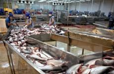 Việt Nam, Nga ký biên bản về ưu tiên phát triển nuôi trồng thủy sản