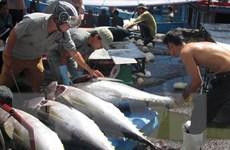 Thực hiện Nghị định 67: Ngư dân vẫn chưa được hưởng lợi
