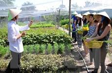 Phát động tháng tuyên truyền cao điểm về vệ sinh an toàn thực phẩm