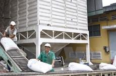 Tháng Một, xuất khẩu gạo tăng mạnh cả về lượng và giá trị