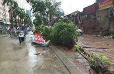 Gió bão khiến khu Đại Thanh, Linh Đàm ngập úng, cây bật gốc la liệt