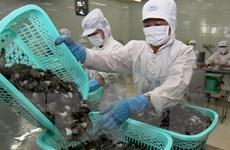 Vi phạm chỉ tiêu hóa chất, chất cấm trong thủy sản gia tăng