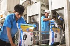 Chọn giống lúa thương hiệu quốc gia để tìm ra gạo Việt ngon