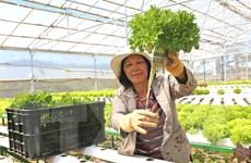 Kinh nghiệm làm giàu tiền tỷ của những người nông dân xuất sắc