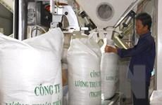 Kiểm dịch thực vật gạo Việt Nam xuất khẩu sang Trung Quốc