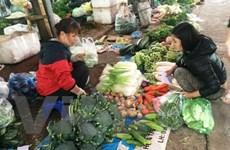 Thời tiết nắng ấm sau Tết khiến giá rau xanh rớt mạnh tại Hà Nội