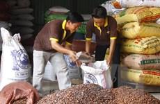 Tạm ngừng nhập 5 loại hạt từ Ấn Độ do phát hiện nhiễm mọt nguy hiểm