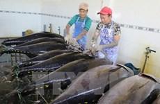 Kim ngạch xuất khẩu nông lâm thủy sản đạt 7,6 tỷ USD trong quý 1