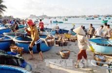 Không khai thác cá tầng đáy ở miền Trung để phục hồi hệ sinh thái biển
