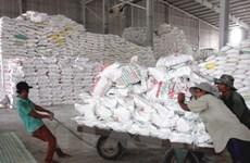 Gạo xuất khẩu của Việt Nam tồn kho lớn vì mức giá bán không cao