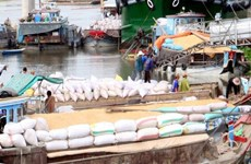 Kim ngạch xuất khẩu nông lâm thủy sản đạt hơn 20 tỷ USD trong 7 tháng