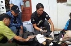 Lai Châu: Cứu hộ thành công một cá thể gấu ngựa tại Sìn Hồ