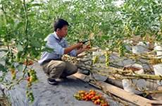 Việt Nam và Australia ký hợp tác nghiên cứu nông nghiệp 10 năm