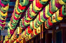 Tháng Tám: Tưng bừng mùa Lễ hội trên Đảo quốc sư tử
