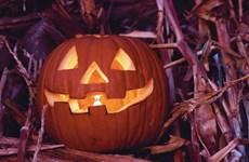 """""""Thực đơn ma quái"""" chào đón mùa lễ hội Halloween 2014"""