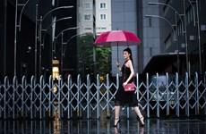 Kha Mỹ Vân nổi bật với phong cách thời trang đường phố ở Việt Nam