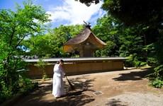 Ấn tượng khó quên khi đến đền thờ Thần Oarai Isosaki Jinja ở Nhật