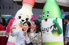 Giới trẻ khám phá rượu gạo Hàn Quốc tại lễ hội ẩm thực Việt-Hàn