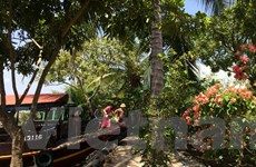 Hội Du lịch Cộng đồng Việt Nam chính thức gia nhập cách mạng 4.0