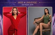 Những 'gương mặt thân quen' ở cuộc thi online Hoa hậu Hoàn vũ Việt Nam