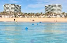 ''Sinh vật lạ'' xuất hiện gần bờ tại Bãi Dài biển Cam Ranh