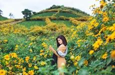 Vietravel: 'Giảm giá mạnh-chất lượng tăng' mùa du lịch cuối năm